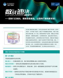 数战速决:IBM SOMA 摆脱信息孤岛截图